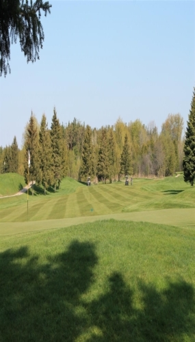 7th green looking back to fairway Victoria Park East Golf Club Guelph