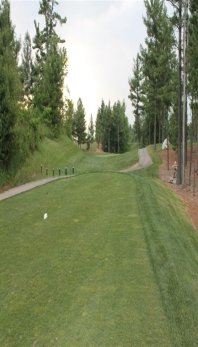 Pines 1st tee at Victoria Park Valley Guelph